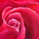 Rosey Lover