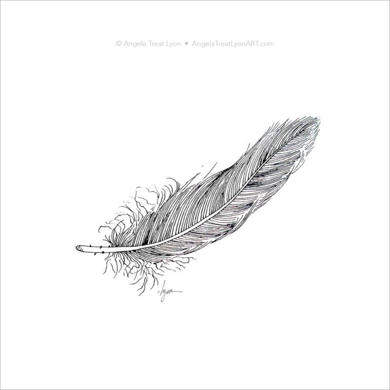 Black Feather on White